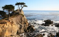 17-mile drive, California, USA - Lone Cypress