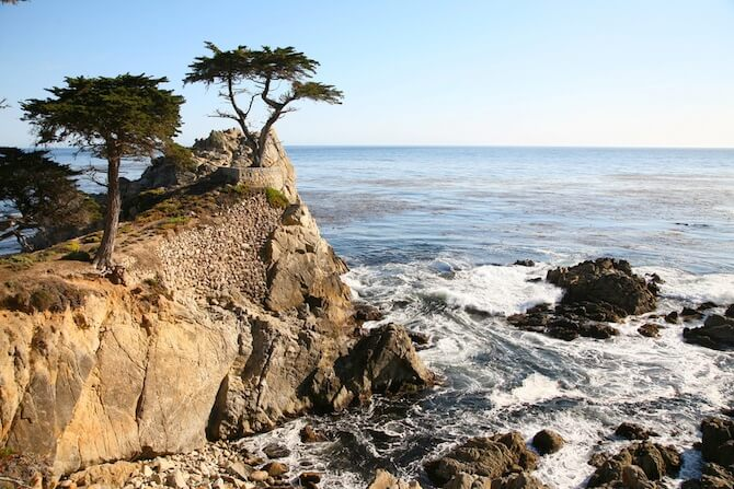 17 Mile Drive, California, USA - Lone Cypress