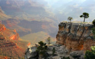 Trees in the distance at the Grand Canyon, Arizona, USA