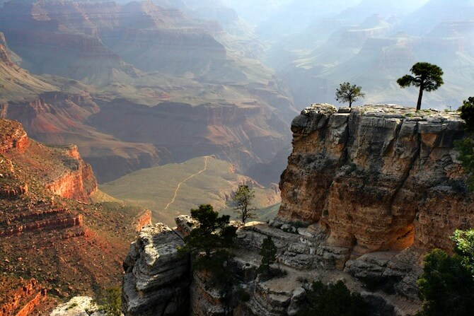 Grand Canyon National Park, Arizona, USA - Tree on Canyon's edge