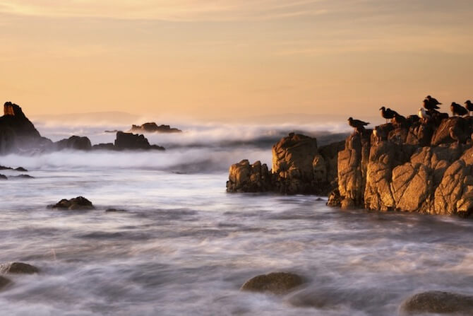 Point Lobus, Big Sur, California, USA - Bay with birds