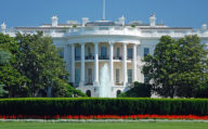 The White House with floral garden in Washington DC, Capitol Region Cruiser