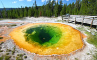 Morning Glory Geyser in Yellowstone National Park, visit American National Parks